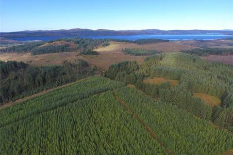 Land for sale - Acharossan Forest, Tighnabruaich, Argyll