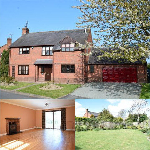 4 bedroom detached house to rent - Withy Close, Forden, Welshpool, Powys