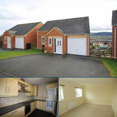 3 bedroom detached house to rent - 3, Brynfa Avenue, Welshpool, Powys, SY21