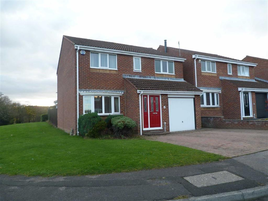 4 Bedrooms Detached House for sale in Woodburn, Tanfield Lea, County Durham