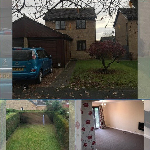 3 bedroom semi-detached house to rent - Maple Close, Lincoln, Lincolnshire. LN5 9UX