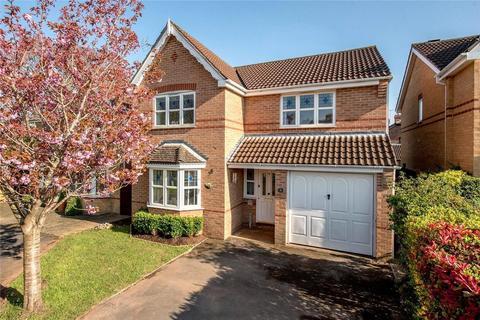 4 bedroom detached house to rent - Craig Lea, Taunton