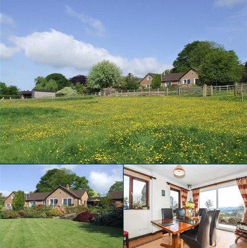 5 bedroom bungalow to rent - Loxbeare, Tiverton, Devon, EX16