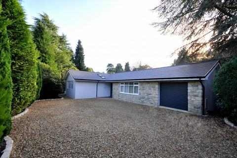 3 bedroom detached bungalow for sale - Avon Castle, Ringwood, BH24 2DQ