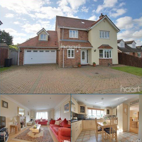 6 bedroom detached house to rent - High Gables, Tolleshunt Knights