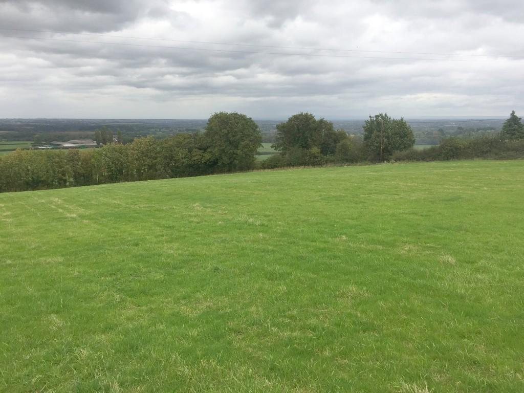 Land Commercial for sale in 5 Acres Pasture Land Hillfoot lane, Newton WA6 6SY