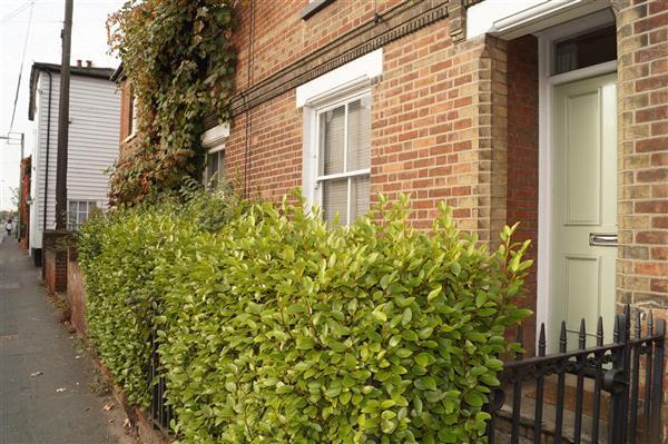 2 Bedrooms End Of Terrace House for sale in Bridge Street, Witham
