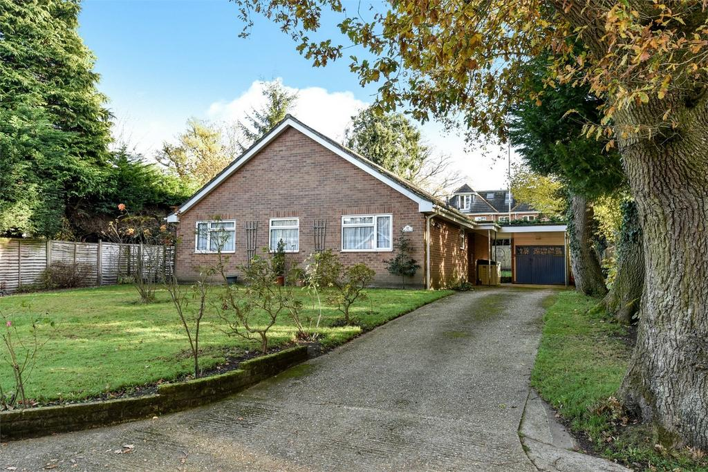 3 Bedrooms Detached Bungalow for sale in Lindford, Hampshire