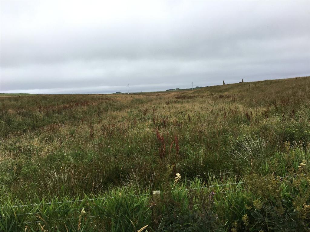 Newlands Of Clyth