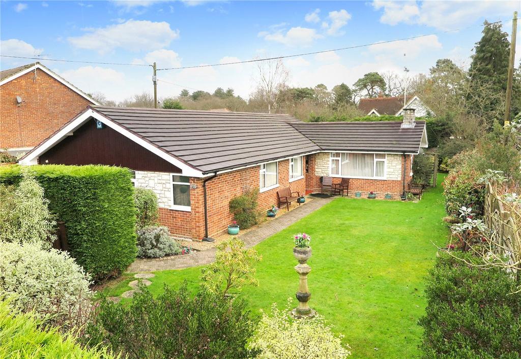 4 Bedrooms Detached Bungalow for sale in Back Lane, Bucks Horn Oak, Farnham, GU10