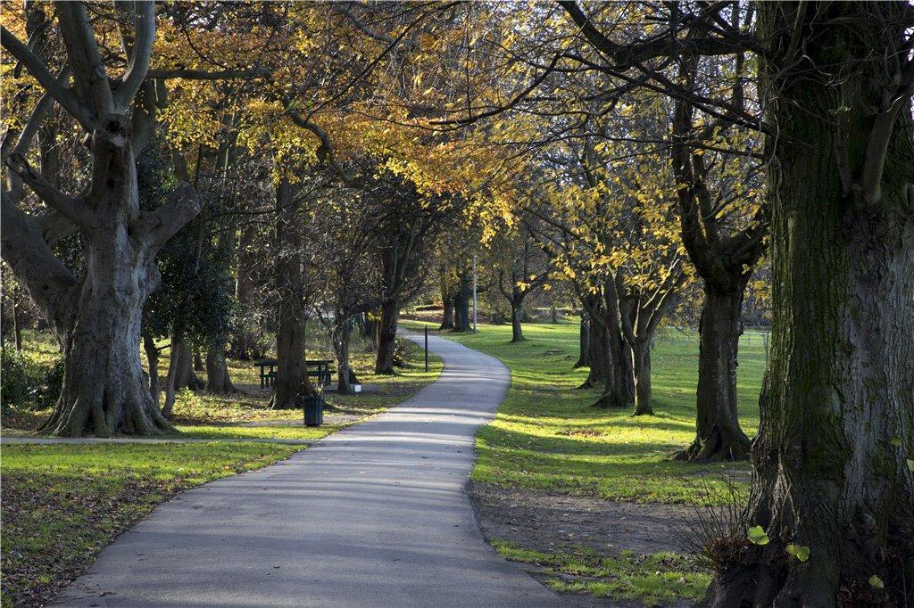 Horsforth Park