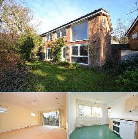 4 bedroom detached house for sale - Brackenbury Close, Ipswich, IP1 3RN
