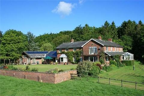6 bedroom detached house to rent - Blandford