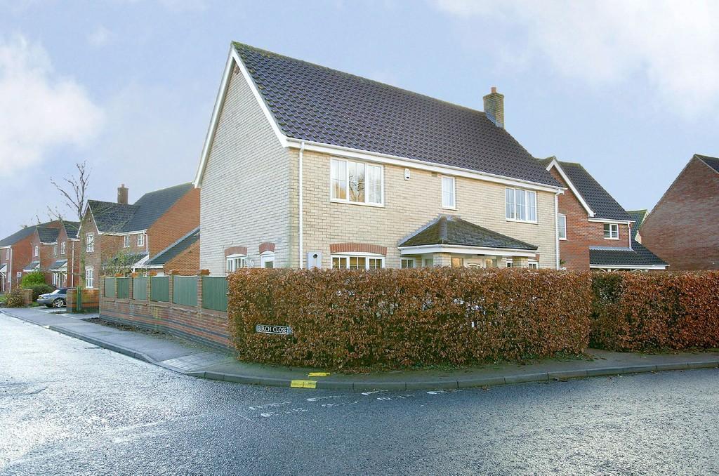 4 Bedrooms Detached House for sale in Greenacres, Little Melton