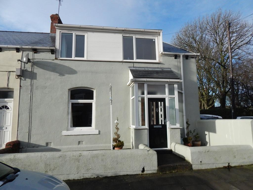 3 Bedrooms Terraced House for rent in Adolphus Street, Sunderland
