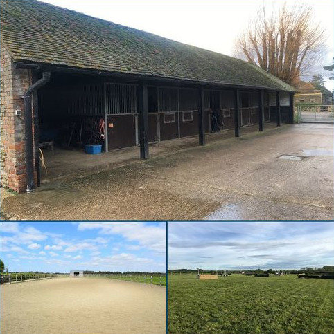 Equestrian facility to rent - Wisborough Green, Billingshurst