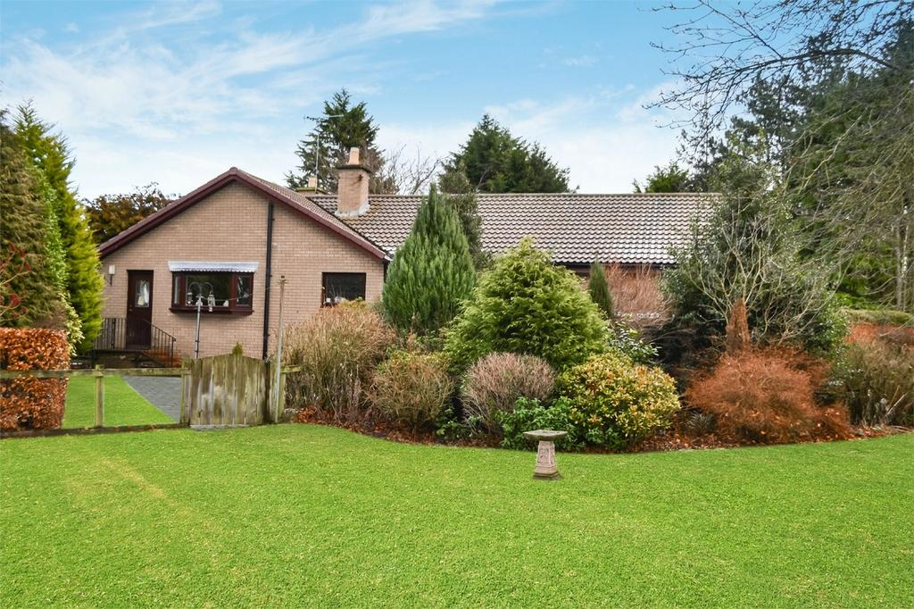 3 Bedrooms Detached Bungalow for sale in Fir Tree Cottage, Longhoughton Road, Lesbury, Northumberland