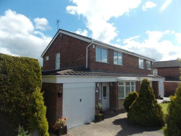 3 Bedrooms Semi Detached House for sale in Larkspur Road, Marton