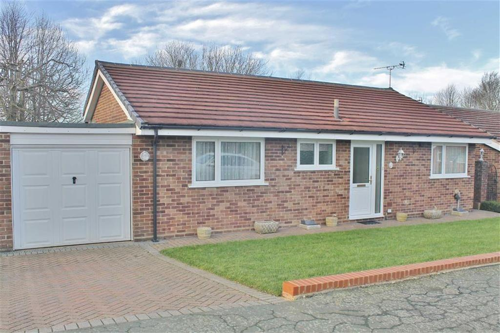 3 Bedrooms Detached Bungalow for sale in Silverbirch Avenue, Culverstone