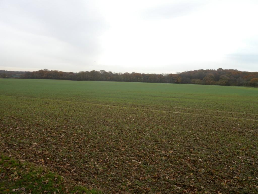 Land Commercial for sale in Lewes, East Sussex