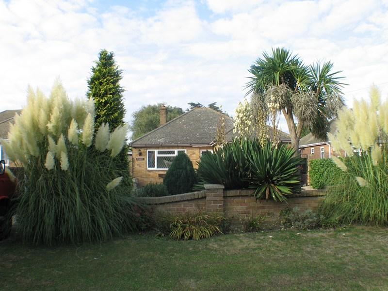 3 Bedrooms Bungalow for sale in Rush Green Road, CLACTON ON SEA