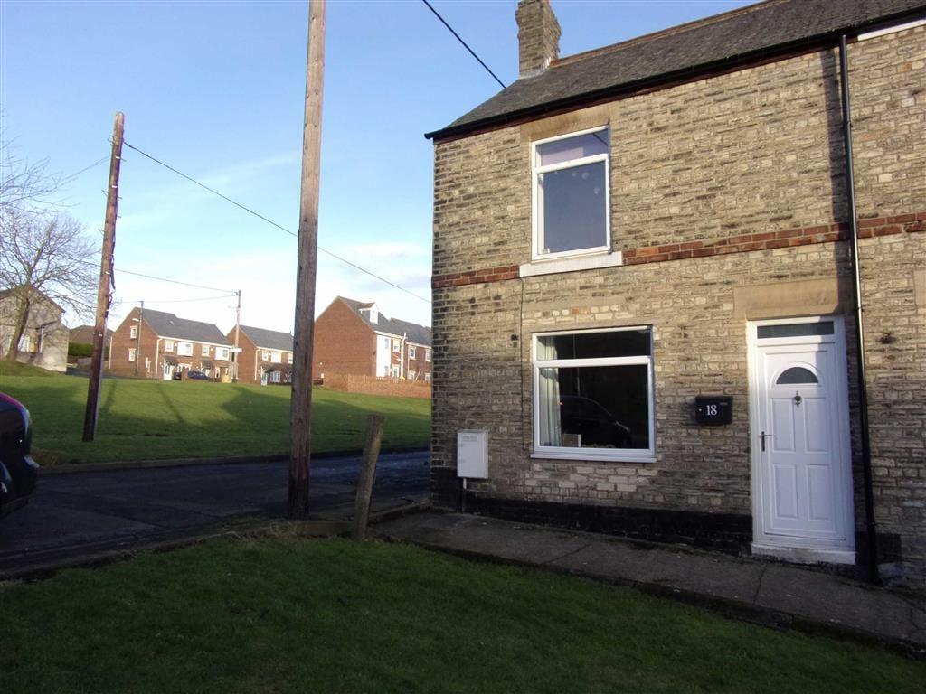 2 Bedrooms End Of Terrace House for sale in Wear Street, Chopwell, Tyne Wear