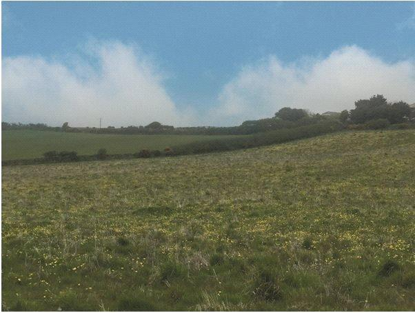 Land Commercial for sale in Rame Cross, Penryn, Cornwall, TR10