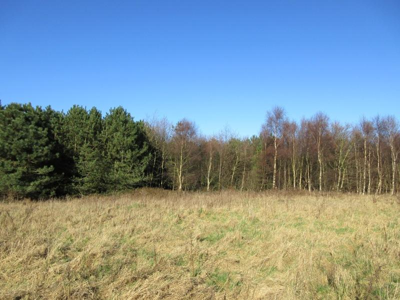 Land Commercial for sale in Laurels Wood, Southport Old Road, Formby, Liverpool L37