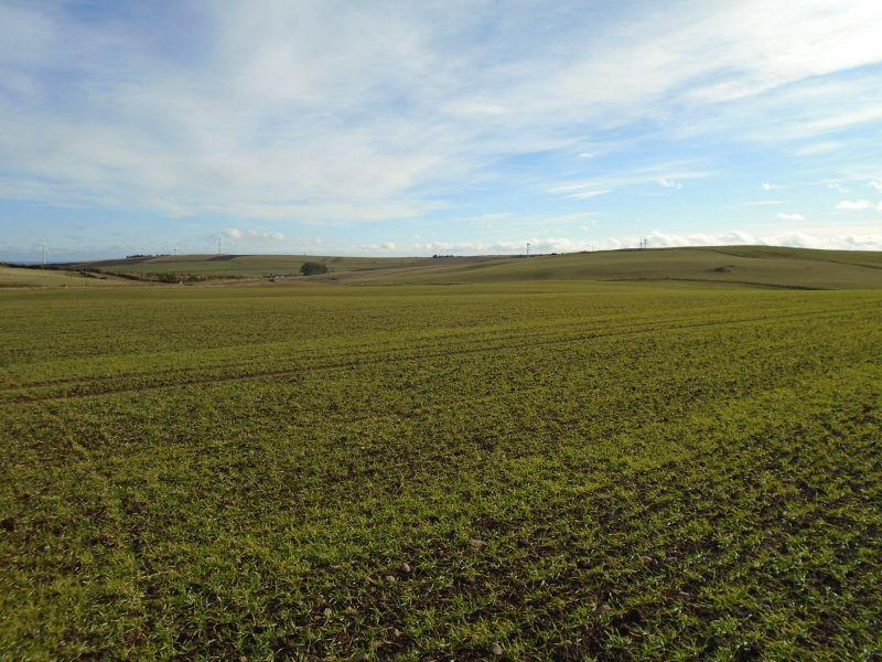 Farm Land Commercial for sale in Stonehaven, Aberdeenshire AB39