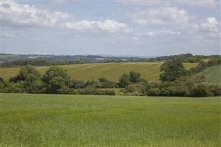 Land Commercial for sale in Rochford, Tenbury Wells, Worcestershire, WR15