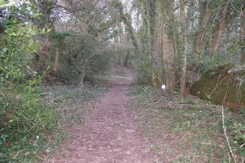 Land for sale - 6.541 acres of woodland off Persondy Lane, Cardiff, CF5 6DW