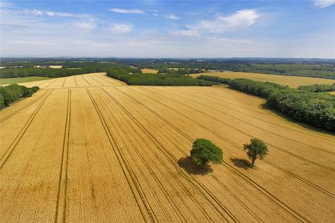 Farm for sale - Court Lodge Farm, Stalisfield, Faversham, Kent, ME13