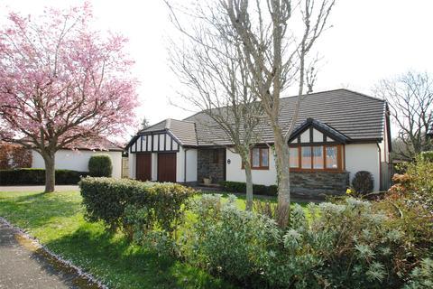 3 bedroom detached bungalow for sale - Philip Avenue, Barnstaple