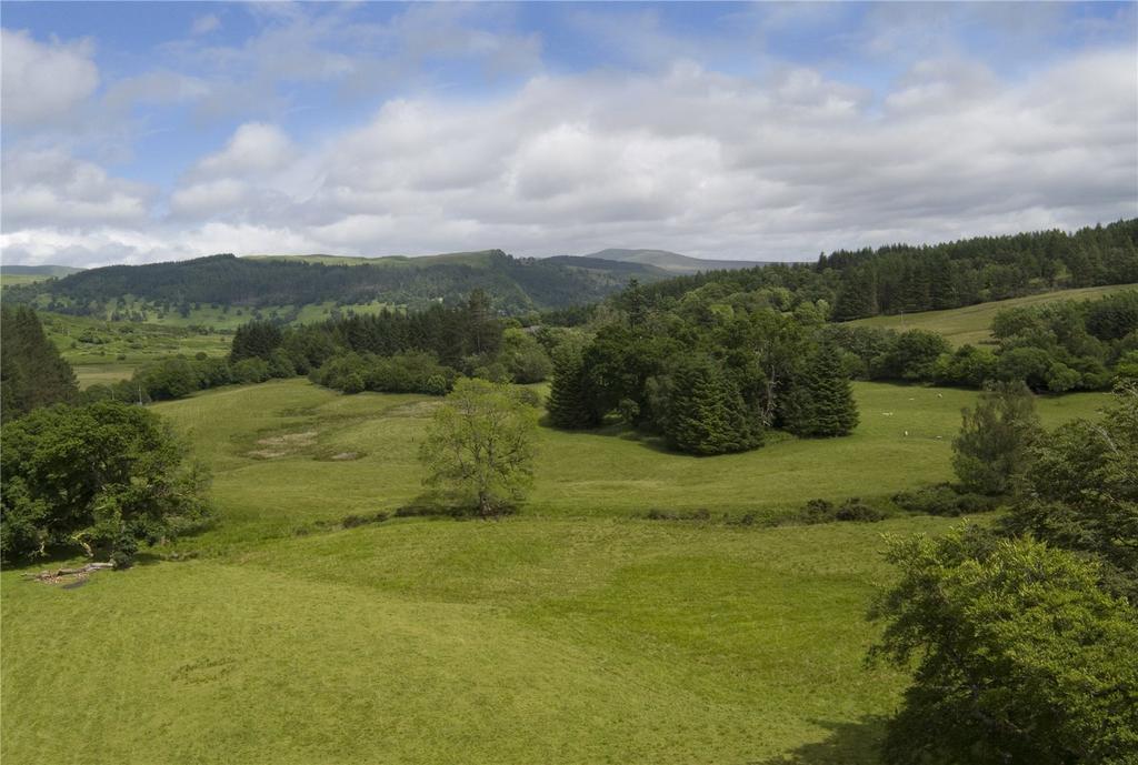 Lot 3 Pasture Land