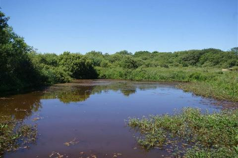 Land for sale - Tremodrett, Roche, St Austell, Cornwall, PL26