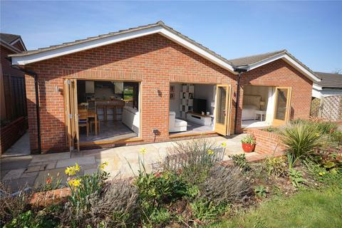 4 bedroom detached bungalow for sale - Beechlands Road, Medstead, Alton, Hampshire