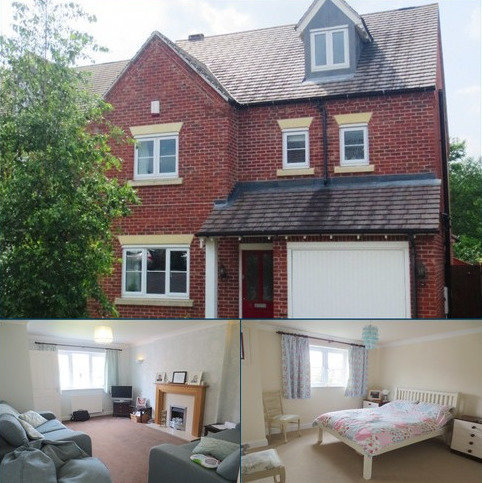 4 bedroom detached house to rent - College Gardens, Radbrook, Shrewsbury