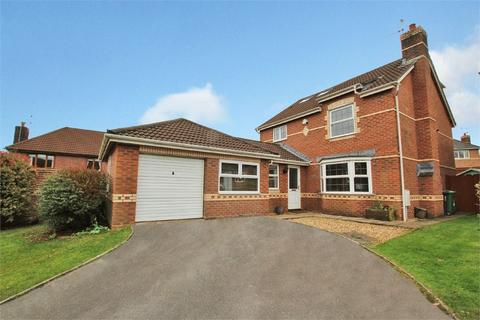 5 bedroom detached house for sale - Llwyn-Y-Grant Road, Penylan, Cardiff