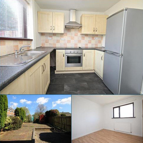 2 bedroom terraced house to rent - Bek Road, Durham