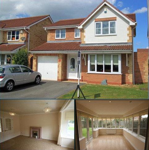 4 bedroom detached house to rent - Bernica Grove, Ingleby Barwick