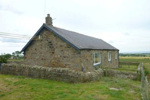 3 bedroom detached bungalow to rent - South East Farm, Shilbottle, Northumberland