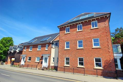 2 bedroom flat for sale - Sandford Court, Sandford Rd, CHELMSFORD, Essex