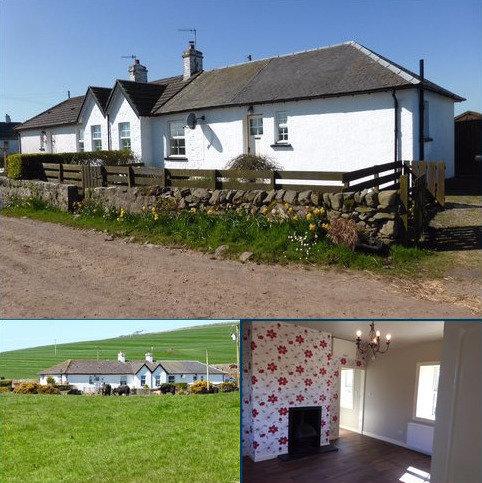2 bedroom semi-detached house to rent - 2 Mahaar Cottages, Kirkcolm, Stranraer, Dumfries and Galloway, DG9