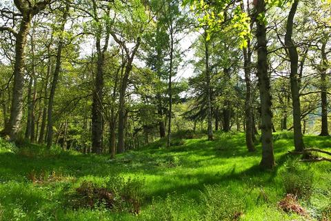 Land for sale - Croft Wood, Near Pitlochry, Perthshire PH16