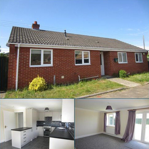 3 bedroom detached bungalow to rent - Cunningham Close, Brandon
