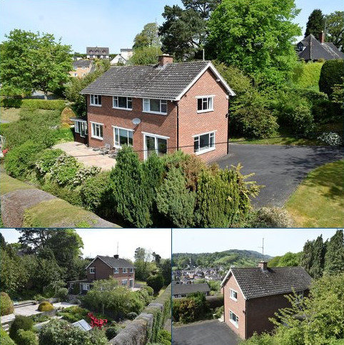 3 bedroom detached house for sale - Red Bank, Welshpool, Powys