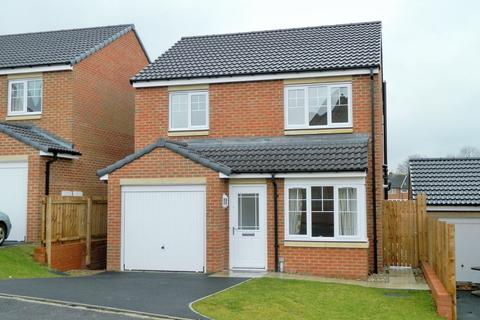 3 bedroom detached house for sale - Foundry Way, Guisborough