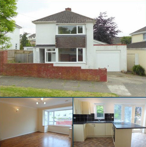 3 bedroom detached house to rent - Windsor Avenue, Newton Abbot