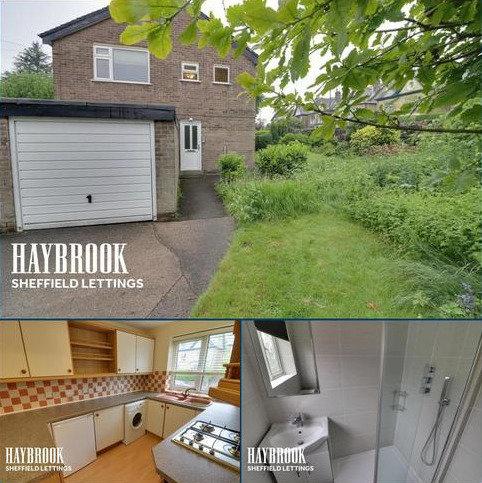 1 bedroom flat to rent - Sharrow Lane, S11