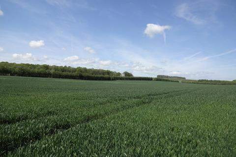 Farm land for sale - New Cut Road , Chilham, Canterbury CT4